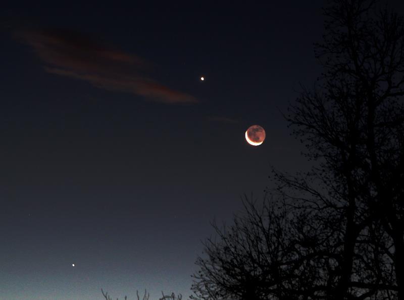 venus_moon