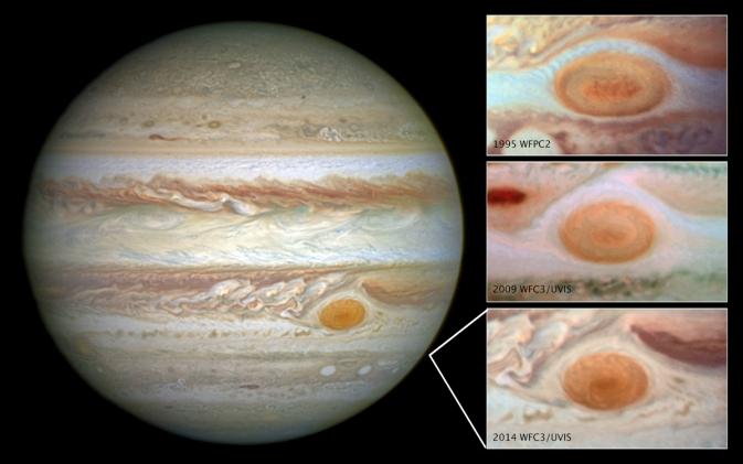 Marea Pata Rosie Jupiter